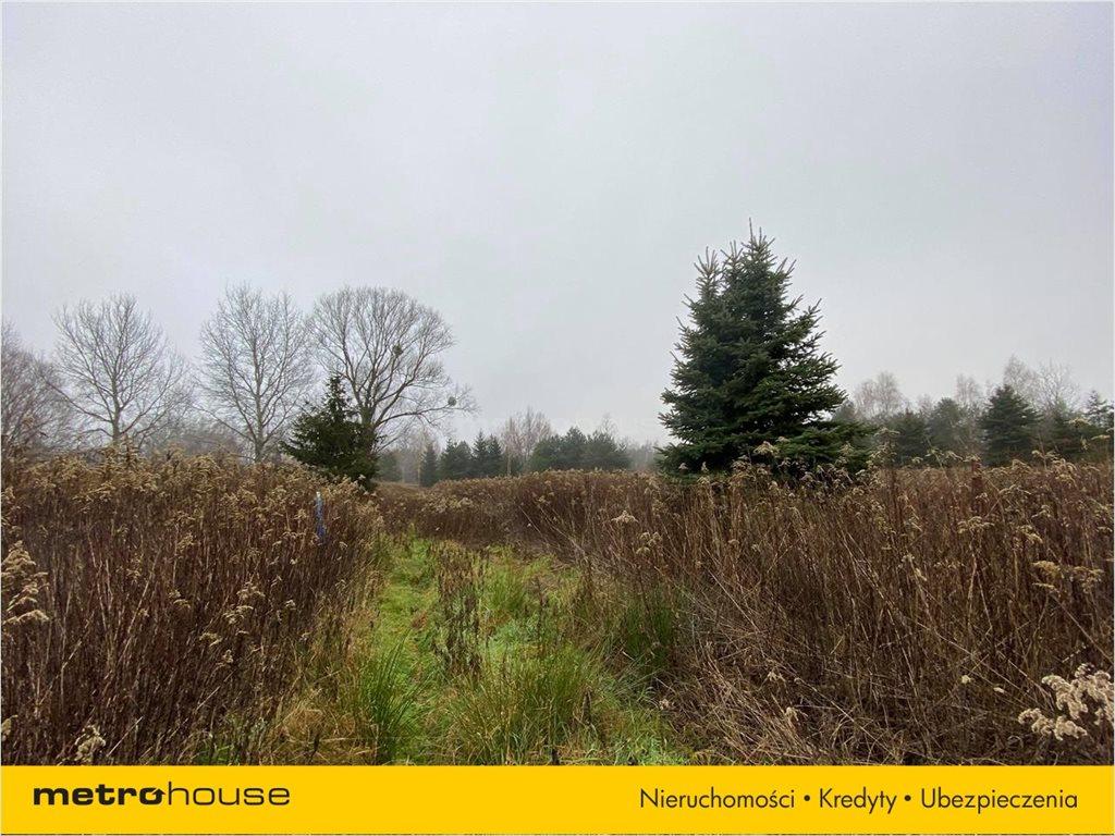Działka rolna na sprzedaż Borowina, Konstancin-Jeziorna  1670m2 Foto 2