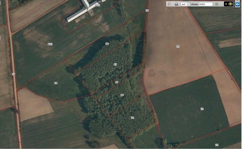 Działka leśna na sprzedaż Rydzewo-Świątki  7555m2 Foto 3