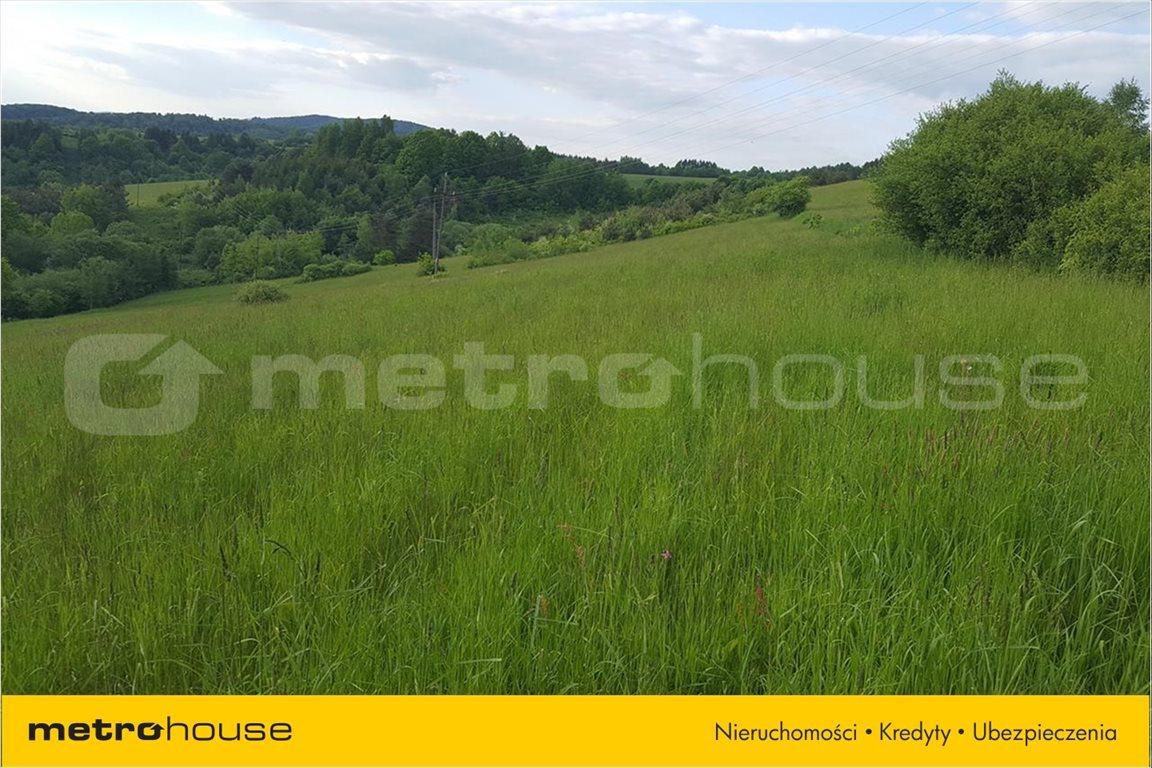 Działka rolna na sprzedaż Średnia Wieś, Lesko  12340m2 Foto 2