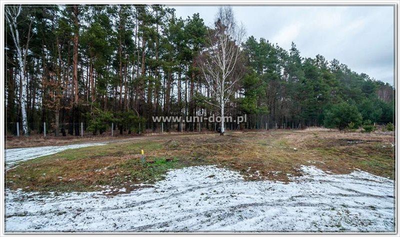 Działka siedliskowa na sprzedaż Czeszów, Główna  23100m2 Foto 3