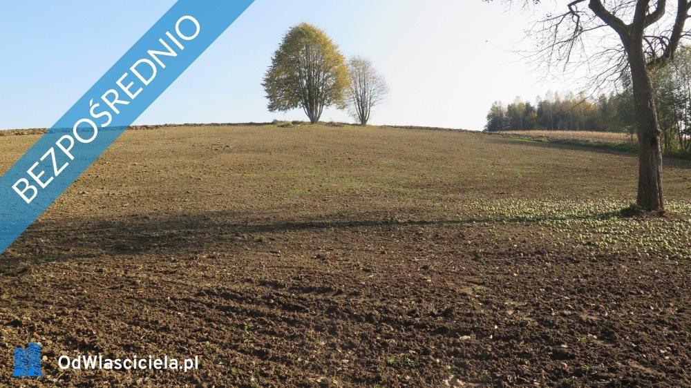 Działka rolna na sprzedaż Korczyna, Łąkowa  4600m2 Foto 1