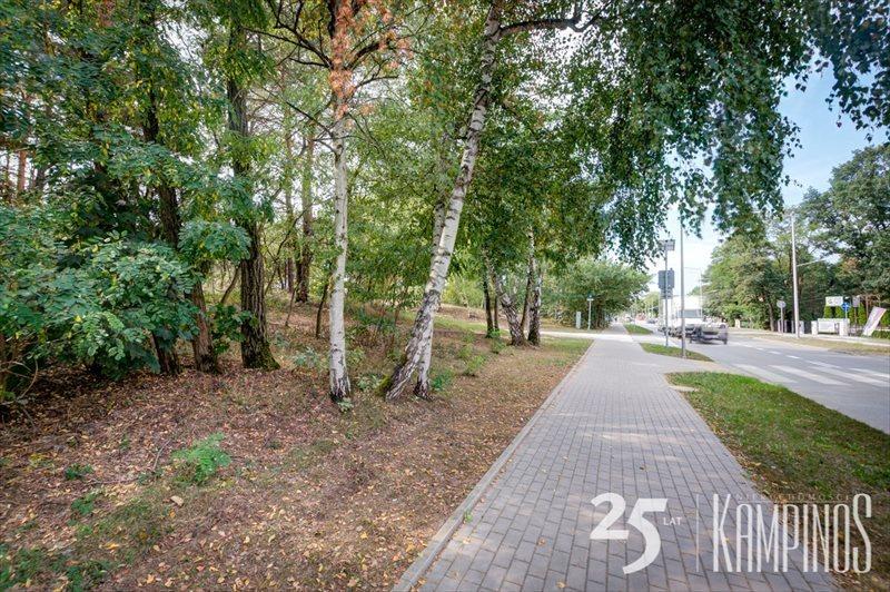 Działka leśna na sprzedaż Hornówek, Izabelin, oferta 2670  4534m2 Foto 5