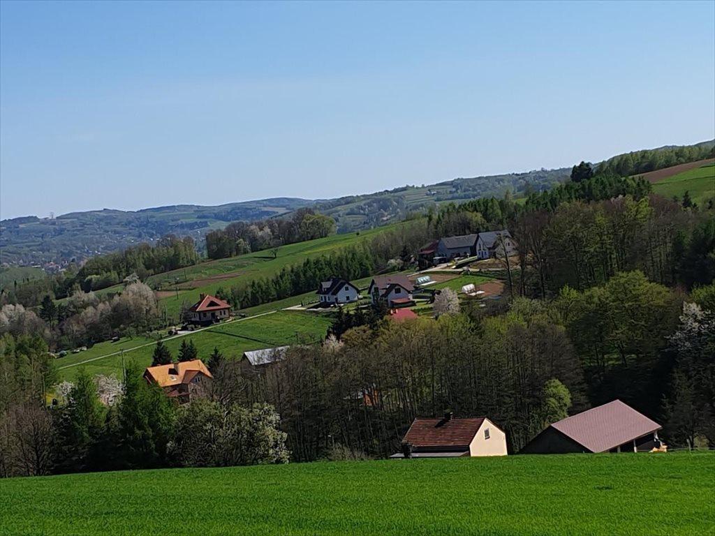 Działka rolna na sprzedaż Czudec, Czudec  8800m2 Foto 3