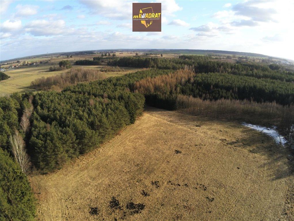 Działka leśna na sprzedaż Drygały  24200m2 Foto 3