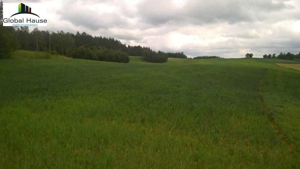 Działka rolna na sprzedaż Nowe Krzywe  3080m2 Foto 6