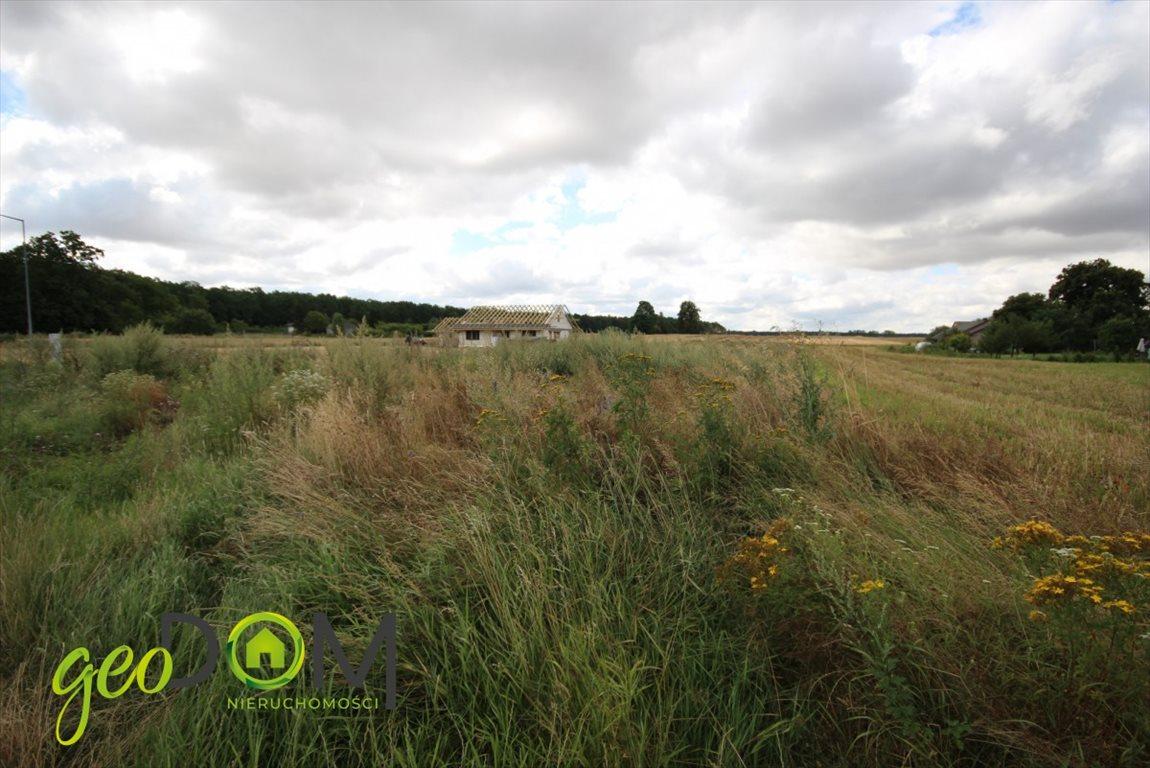 Działka budowlana na sprzedaż Wilczopole  1444m2 Foto 3