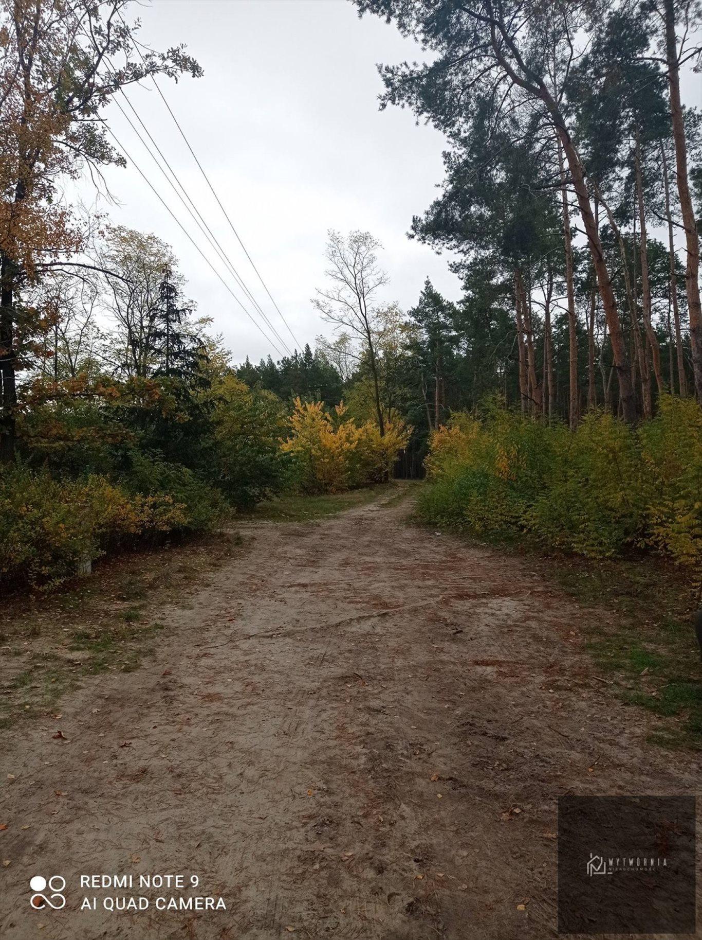 Działka leśna na sprzedaż Leśnik  1980m2 Foto 7