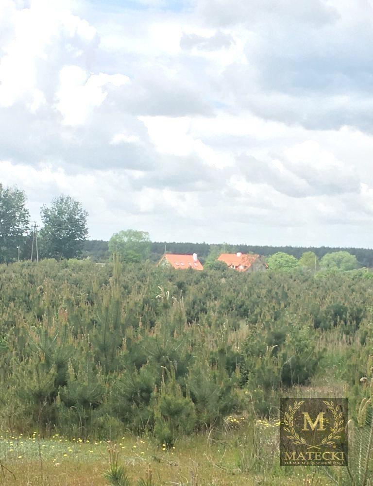 Działka siedliskowa na sprzedaż Karczewko, Jodłowa  3031m2 Foto 3