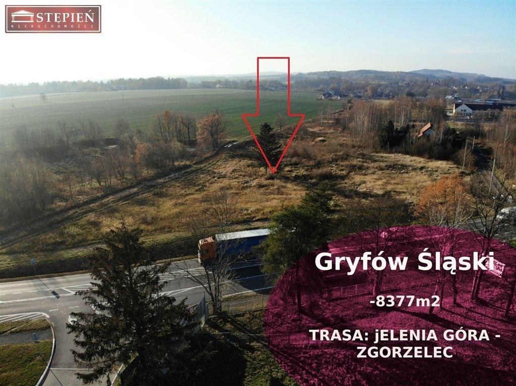 Działka budowlana na sprzedaż Gryfów Śląski  8377m2 Foto 1