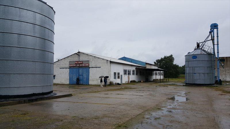 Lokal użytkowy na sprzedaż Szamotuły, Ludwikowo  4200m2 Foto 1