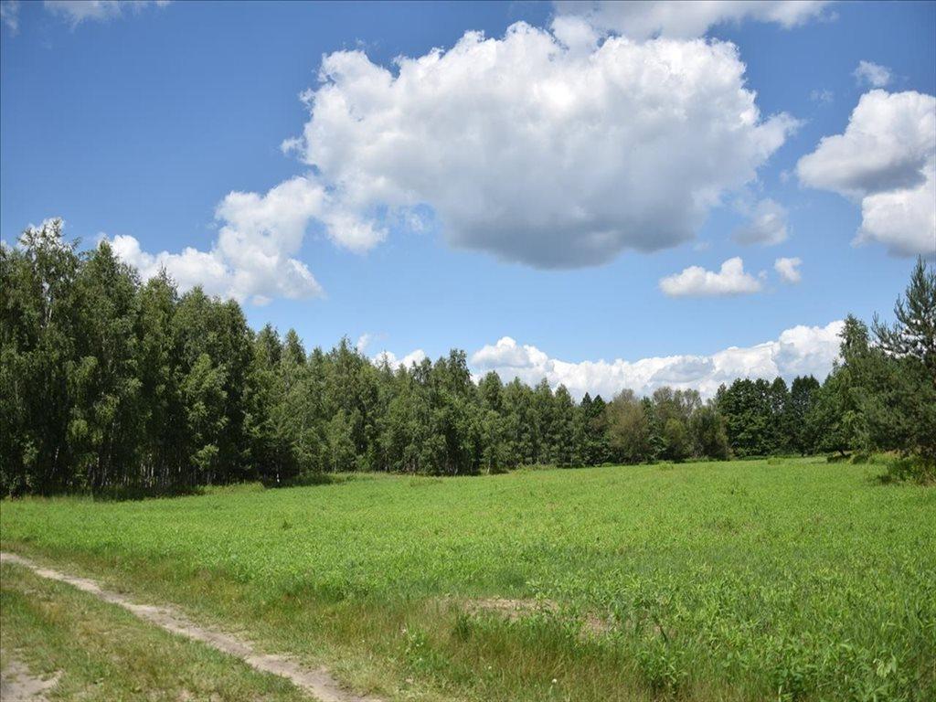 Działka rolna na sprzedaż Kuźniczysko, Trzebnica  6900m2 Foto 2