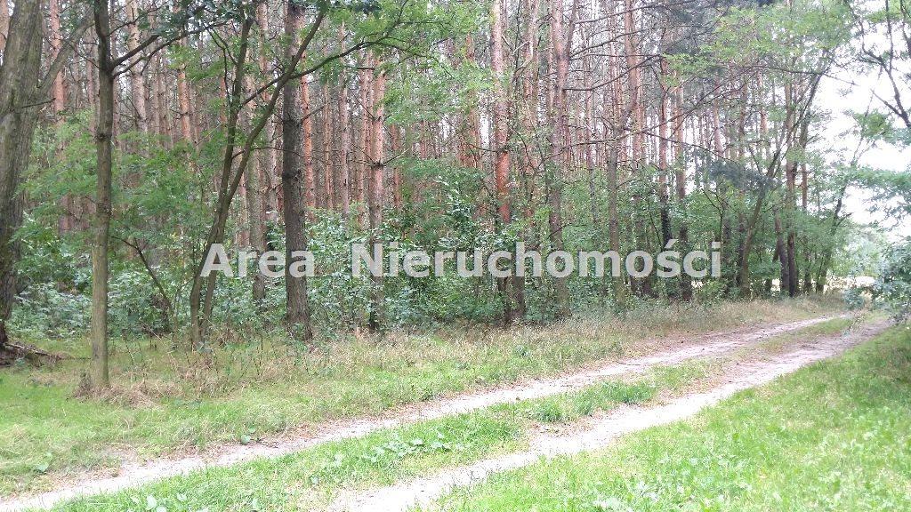 Działka inna na sprzedaż Astachowice  60m2 Foto 12