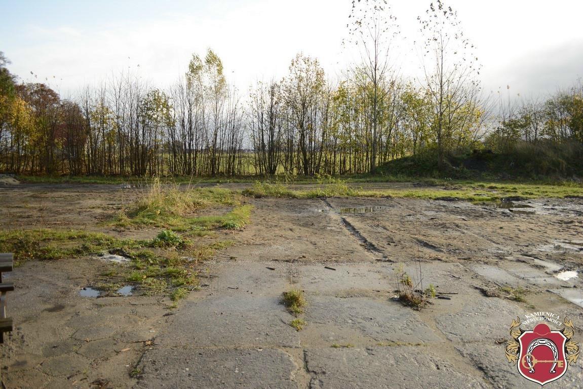 Działka rolna na sprzedaż Rekowo Górne  6429m2 Foto 3