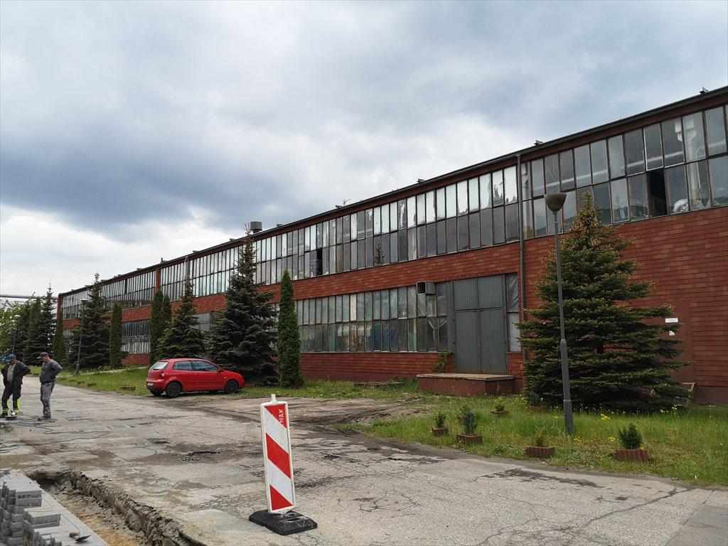 Lokal użytkowy na sprzedaż Bydgoszcz, Górny Taras, Glinki, Glinki 146  2549m2 Foto 3