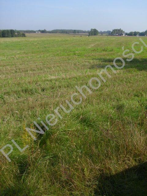 Działka rolna na sprzedaż Mszczonów  18500m2 Foto 1