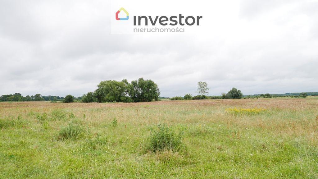 Działka inwestycyjna na sprzedaż Nowe Chojno  10811m2 Foto 5