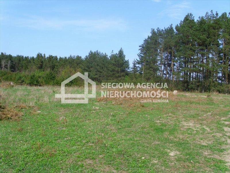 Działka budowlana na sprzedaż Sitno  3005m2 Foto 1