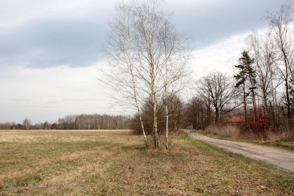 Działka siedliskowa na sprzedaż Kamionka  19445m2 Foto 2