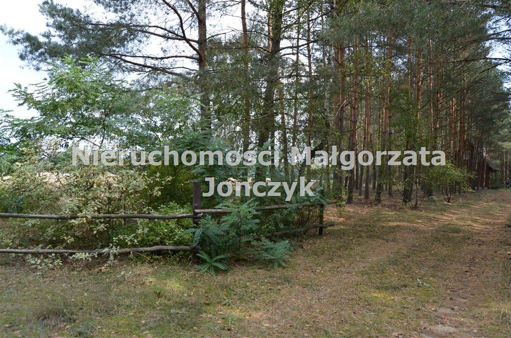 Dom na sprzedaż Zielęcice  75m2 Foto 4