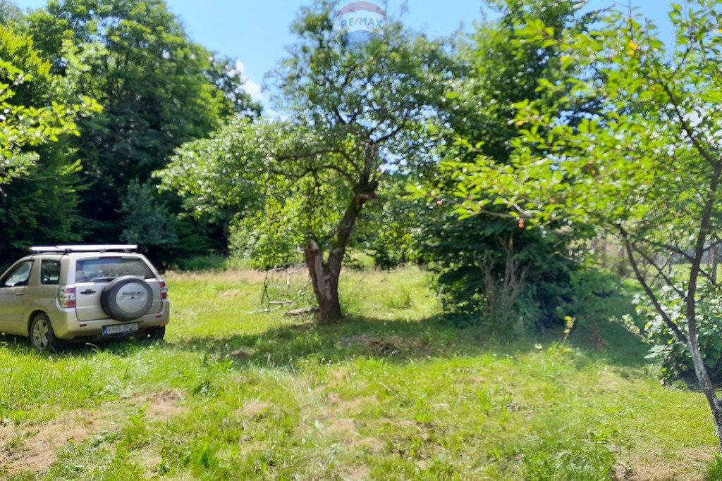 Działka siedliskowa na sprzedaż Grzechynia  1600m2 Foto 3