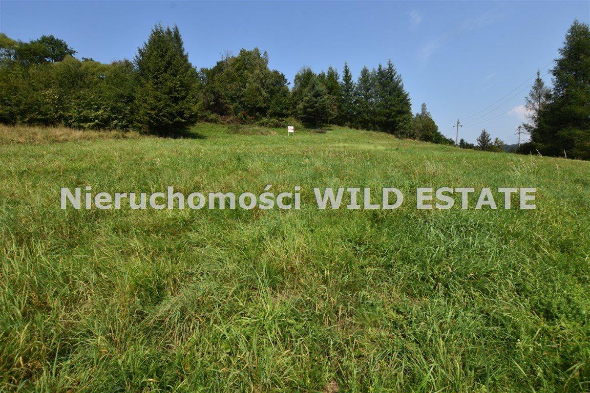 Działka rolna na sprzedaż Solina, Bóbrka  4389m2 Foto 4