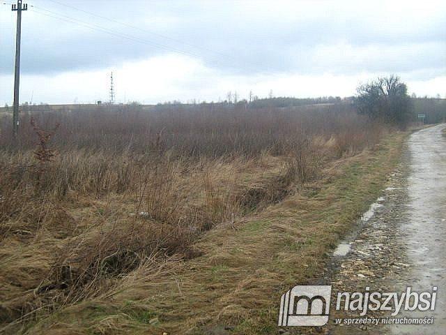 Działka rolna na sprzedaż Szczecin, Skolwin  10581m2 Foto 2