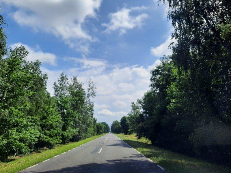 Działka rolna na sprzedaż Kampinos, Wola Pasikońska  3000m2 Foto 8