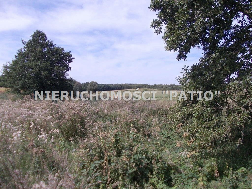 Działka inna na sprzedaż Zbierkowo, Zbierkowo  6000m2 Foto 7