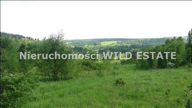 Działka rolna na sprzedaż Ustrzyki Dolne, Jureczkowa  22700m2 Foto 6