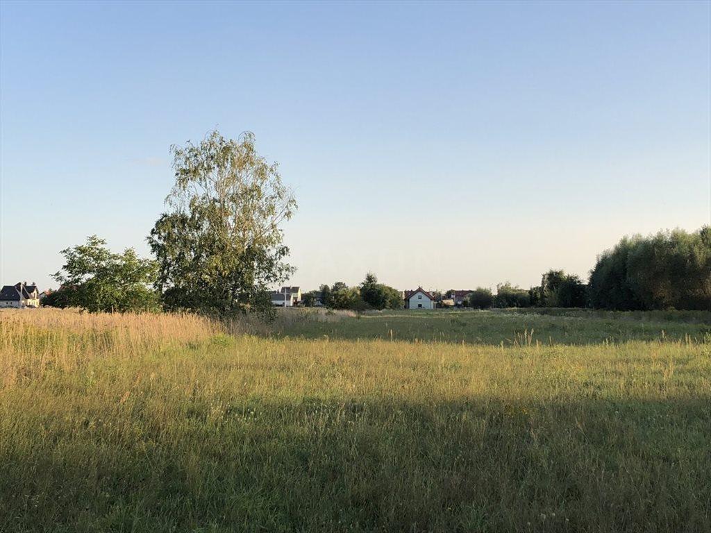 Działka siedliskowa na sprzedaż Łomna  12024m2 Foto 6
