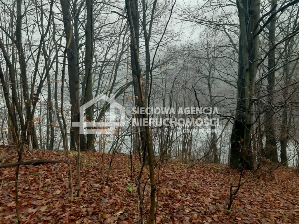 Działka leśna na sprzedaż Nowa Karczma, Kamiony  2605m2 Foto 1