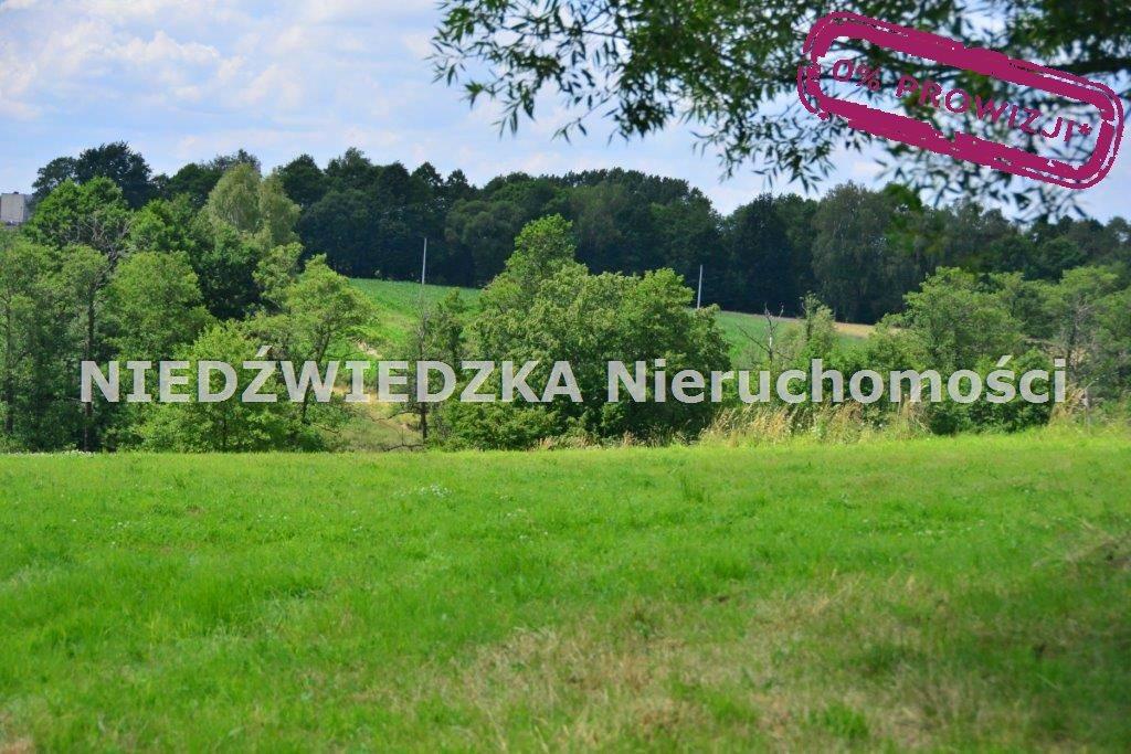 Działka budowlana na sprzedaż Mikołów, Mokre  12507m2 Foto 4