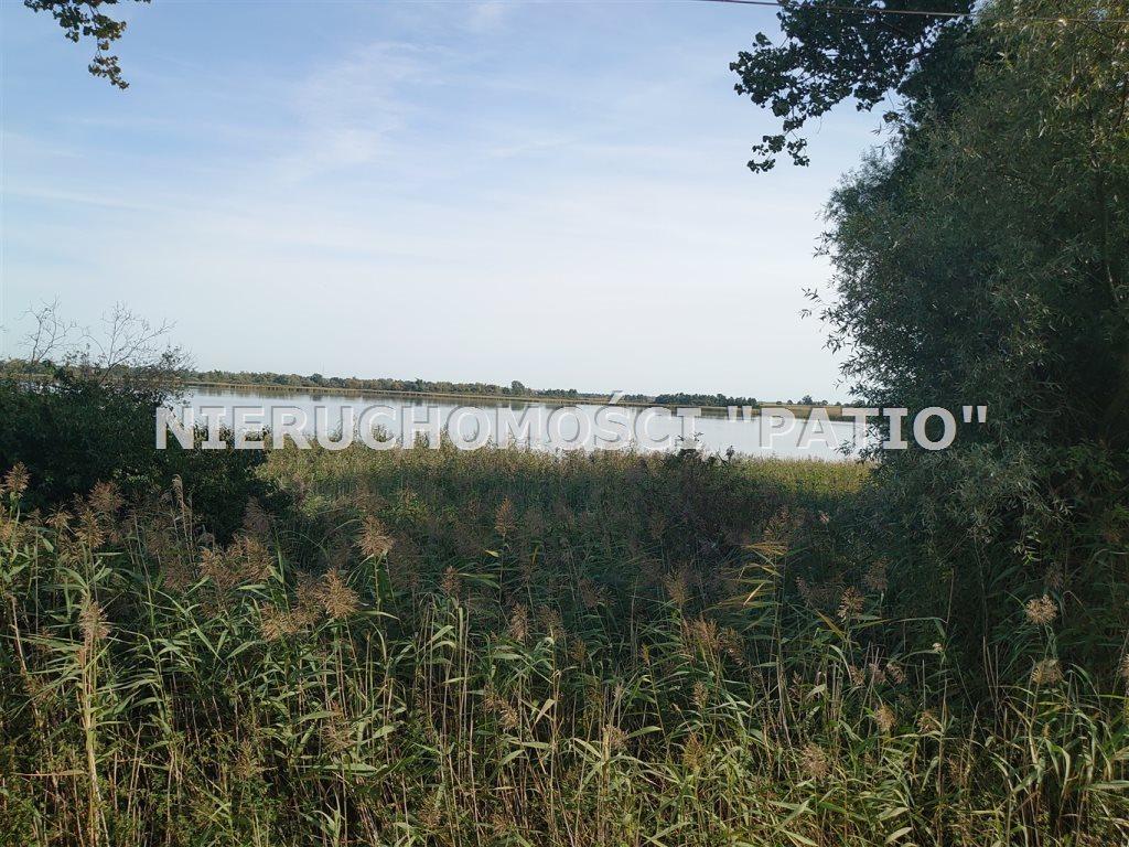 Działka inwestycyjna na sprzedaż Żnin, Bożejewiczki  8500m2 Foto 4
