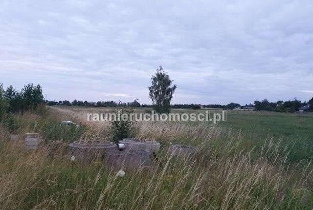 Działka przemysłowo-handlowa na sprzedaż Tarnowo Podgórne, Poznańska  58200m2 Foto 8