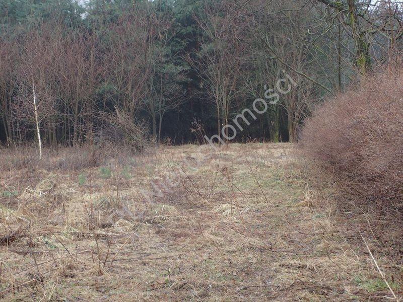 Działka rolna na sprzedaż Marianka  2850m2 Foto 1