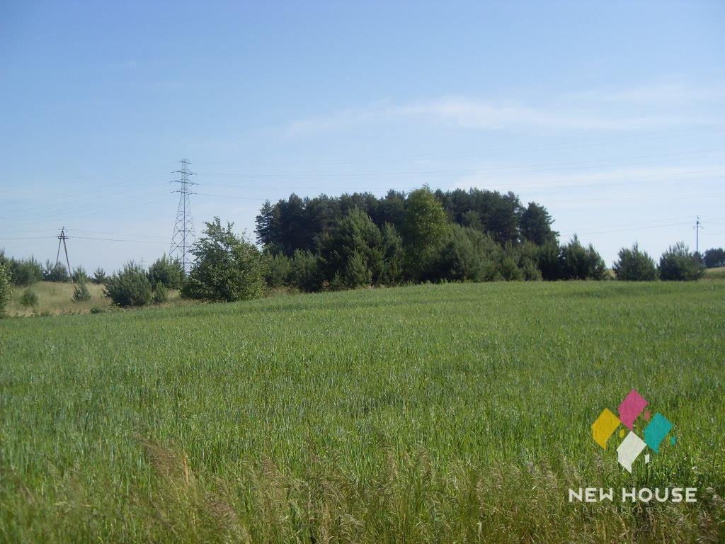 Działka rolna na sprzedaż Mątki  3000m2 Foto 1