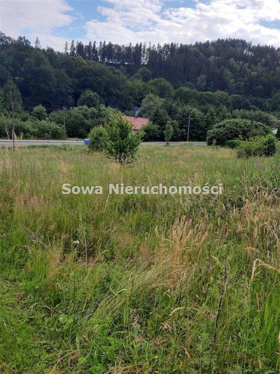 Działka inna na sprzedaż Ludwikowice Kłodzkie  1000m2 Foto 1