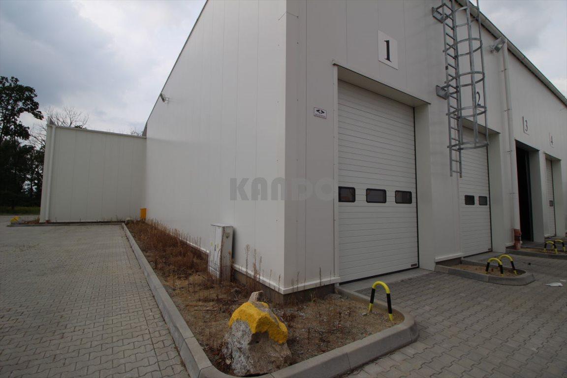 Lokal użytkowy na wynajem Długołęka, Magazyn 1260m2 , Długołęka  1260m2 Foto 2