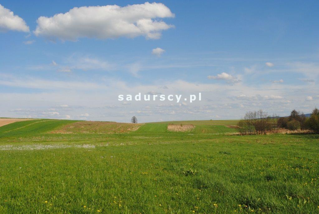 Działka rolna na sprzedaż Ściborzyce  34334m2 Foto 7