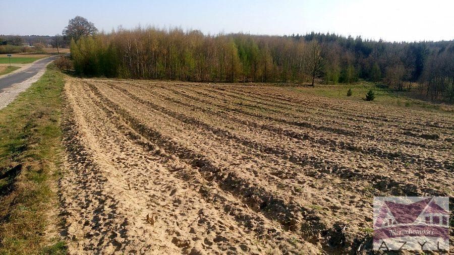 Działka rolna na sprzedaż Lubcza  5000m2 Foto 5