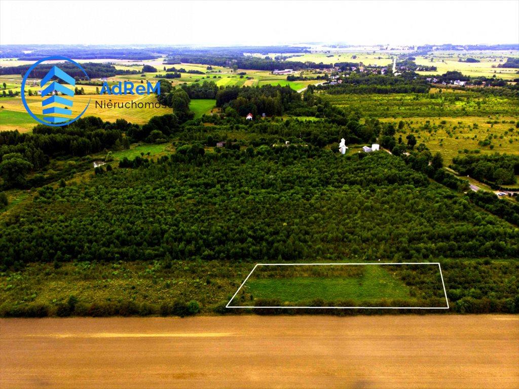 Działka rolna na sprzedaż Baciuty  3008m2 Foto 4