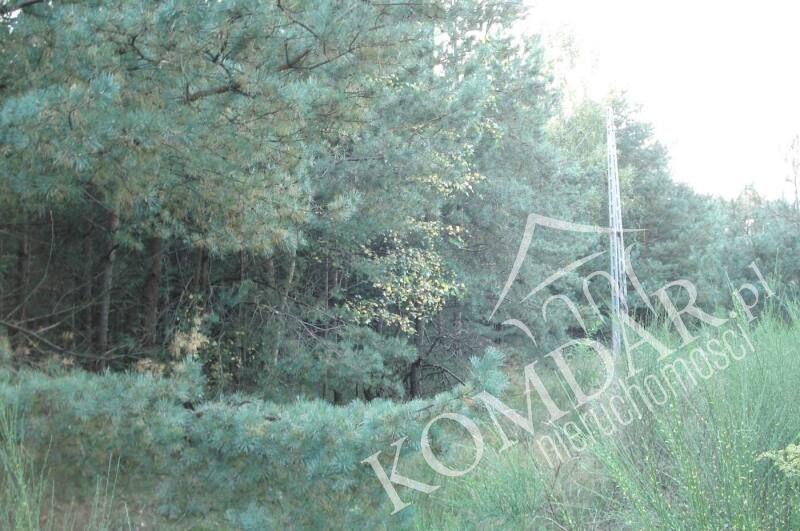 Działka budowlana na sprzedaż Józefów, Józefów  2000m2 Foto 2