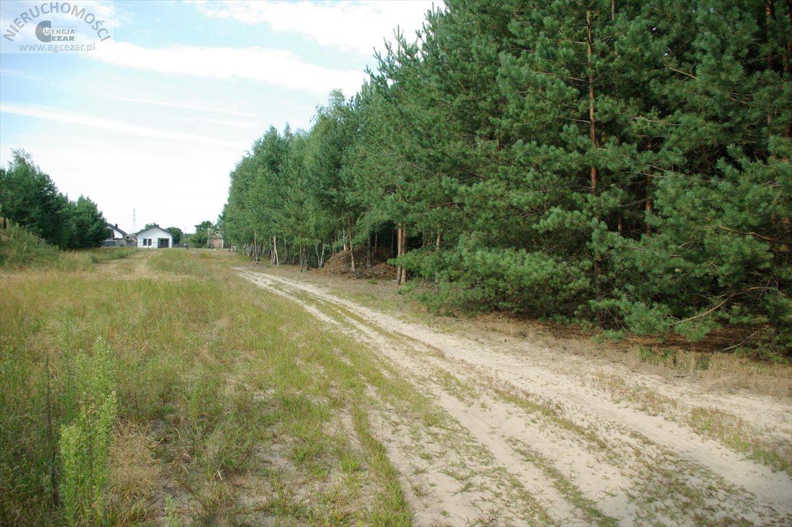 Działka budowlana na sprzedaż Łaziska  1060m2 Foto 11