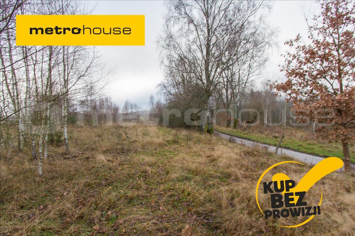 Działka rolna na sprzedaż Jelonek, Borne Sulinowo  30900m2 Foto 1