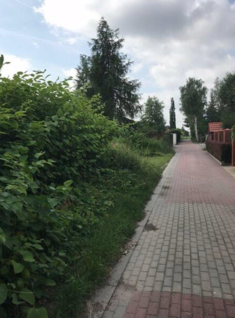 Działka budowlana na sprzedaż Warszawa, Ursynów, Gawota  1009m2 Foto 4