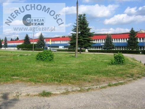 Działka przemysłowo-handlowa na sprzedaż Siedlce, Kleberga  4709m2 Foto 5