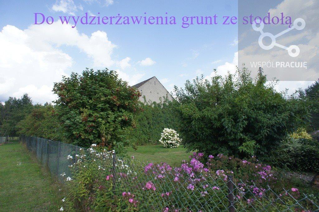 Działka rolna pod dzierżawę Krzywice  8385m2 Foto 1
