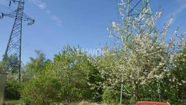 Działka rolna na sprzedaż Polkowice, Energetyków  11129m2 Foto 4