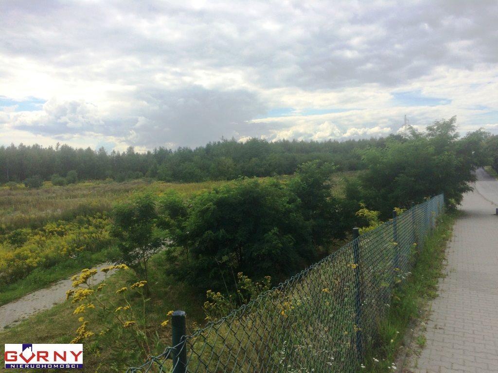 Działka inna pod dzierżawę Piotrków Trybunalski  11060m2 Foto 6