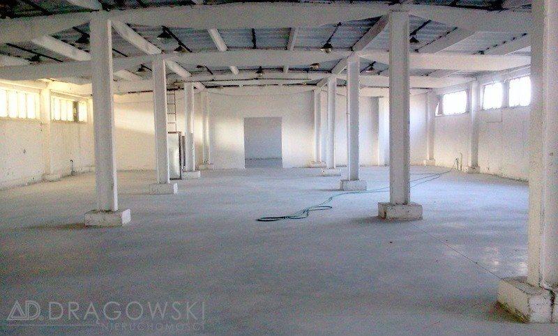 Lokal użytkowy na sprzedaż Nowy Dwór Mazowiecki  4500m2 Foto 3